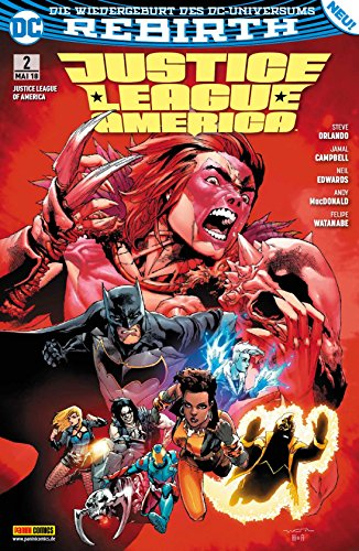 Justice League of America: Bd. 2: Der Fluch -