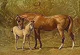 Fine Art Print–Vollblut Stute und Fohlen, 1900von Bentley Global Arts Gruppe, canvas, multi, 8 x 6