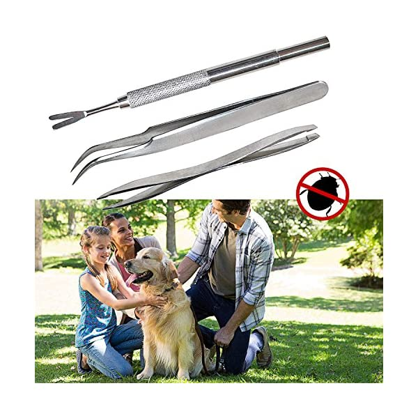 Tick Tweezers, tweezers tick remover, tick tweezers pet, dog tick tweezers, Tick Removal Tool, Professional Tick Tweezers for Dogs/ Cats/ Horses/ Humans, Pack of 3 2