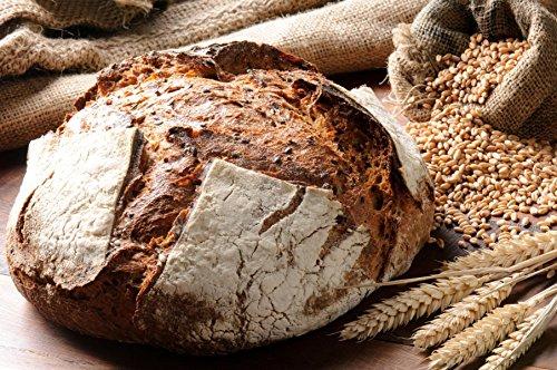 Bio Sauerteig (Roggensauer) | aus 100% Demeter Roggenmehl | frischer Natursauerteig – perfekt für Brote oder als Anstellgut – Inhalt: 300g Roggensauerteig - 5