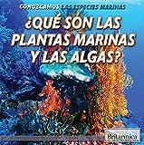Qué son las plantas marinas y las algas?/ What Are Sea Plants and Algae? (Conozcamos Las Especies Marinas/ Let's Find Out! Marine Life)