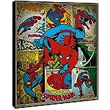 Cuadro Spiderman
