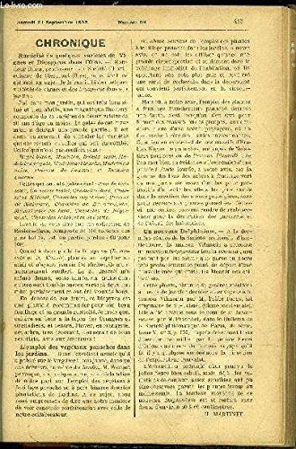 Ampelopsis [Pdf/ePub] eBook