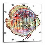 3dRose DPP 170877_ 3Discus Poisson avec Les Jeunes d'alimentation pour Arrêt du Parent Fish-Wall Horloge, 15par 38,1cm
