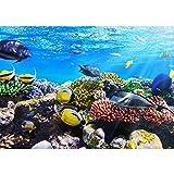 Vlies Fototapete PREMIUM PLUS Wand Foto Tapete Wand Bild Vliestapete - UNDERWATER REEF - Aquarium Korallen Unterwasser Meer Fische Riff Korallenriff - no. 105, Größe:400x280cm Vlies