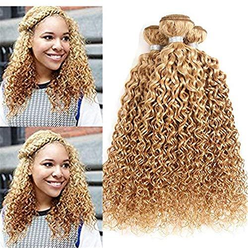 AEHAIR Human Haarverlängerung 8A Brasilianisch Virgin Kinky Gelockt Echthaar Tressen 100% Unverarbeitet Haar Farbe 27# Honig Blond 1 Stück (95-100g/Stück), 30