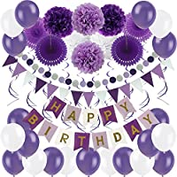 Zerodeco Birthday Decoration Set, Happy Birthday Banner Bunting with 4 Paper Fans Tissue 6 Paper Pom Poms Flower 10 Hanging Swirl and 20 Balloon for Birthday Party Decorations