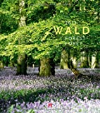 Wald 2013 -