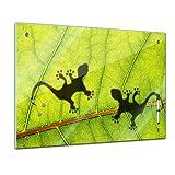Memoboard 60 x 40 cm, Tiere - Gekko auf einem Bananenblatt - Glasboard Glastafel Magnettafel Memotafel Pinnwand Schreibtafel - Tiermotive - Tierbild - Tier - Blatt - grün - Natur - Pflanze - Natur - Echse - Silhouette - Wohnzimmer - Schlafzimmer - Küche - Esszimmer - Bild auf Glas - Glasbild - Handmade - Design - Art