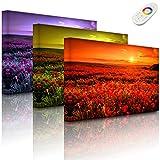 Lightbox-Multicolor | LED Bild Leuchtbild | Mohnblütenfeld bei traumhaftem Sonnenuntergang | 100x70 cm | Fully Lighted