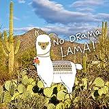 Die Geschenkewelt 45571 Plüsch-Mäppchen mit Happy Life Lama-Motiv und Kaktus, mit Spruch No Drama Lama, 20 cm x 12 cm x 4 cm, mit Reißverschluss, Geschenk-Artikel Test