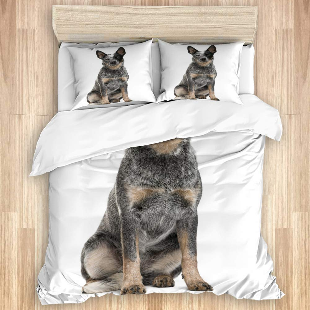 not Duvet Cover Set Australian Cattle Dog art print Decorative 3 Piece Bedding Set with 2 Pillow Shams Single