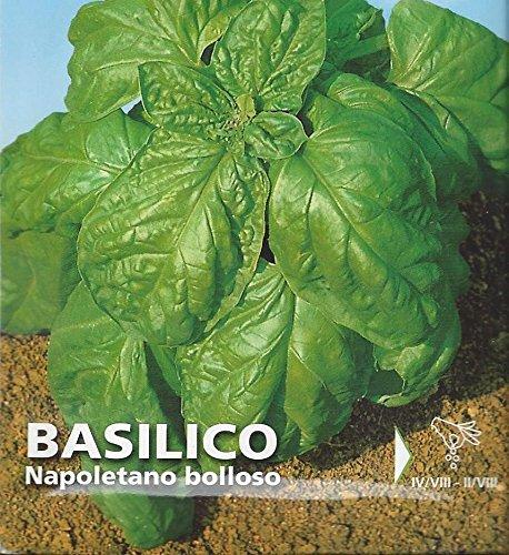 """Premier Seeds Direct IPP58 3.1g Semi di basilico italiano """"Napoletano Bolloso"""" (confezione 1900)"""