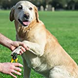 Professioneller Krallenschneider Krallenzange für Hunde von Thunderpaws mit Schutzvorrichtung, Sicherheitsverschluss und Nagelfeile – Geeignet für mittelgroße und große Rassen - 5