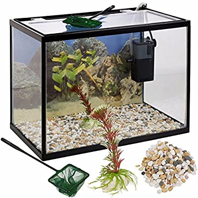 18 Litre Glass Aquarium Fish Tank Starter Set With Filter Pump Net Plant Stones