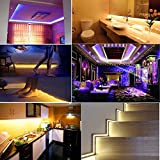 Global Tech Product_ IP65 Waterproof WIFI RGB LED Strip 16M Colors For Home Decoration [Suitable For Back Side Of TV, Under Bed, False Ceiling), Work With Amazon Echo