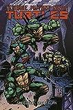 Teenage Mutant Ninja Turtles: Bd. 10: Shredder greift an
