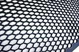 Goingfast 119900101 Universal ABS Renngitter zuschneidbar, Schwarz, 104x34cm