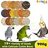 COLOURFUL AQUARIUM™ - Natural & Healthy Birds Food for Parrots, Conure and Cockatiel | Daily Birds Food Seed Mix (900g)