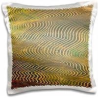 Washington - Lentil peas, Palouse hills 16x16