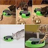 Katzenspielzeug mit Dreh Maus Kitten Spielzeug Spinning-Maus Um 360 ° drehbar mit Scratch Pad Verkratzen Klaue Pflege Mat (Grün) - 6