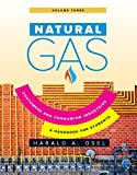 Natural Gas: Consumers and Consuming Industry (English Edition)