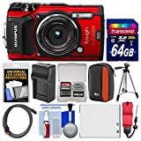 Best Olympus Gps Cameras - Olympus Tough TG-5 4K Wi-Fi GPS Shock Review