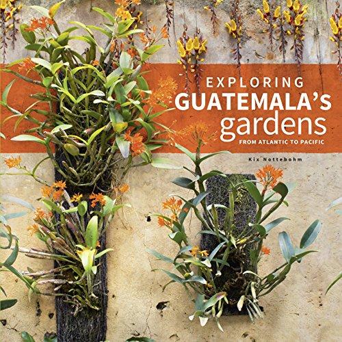 exploring-guatemalas-gardens-from-atlantic-to-pacific