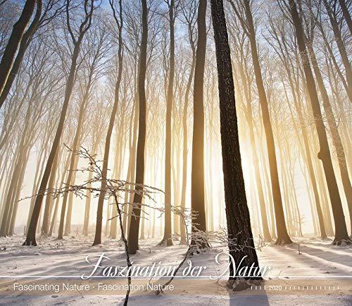 Faszination der Natur 2020 - Fascinating Nature - Bildkalender (33,5 x 29) - Landschaftskalender - Natur - Wandkalender