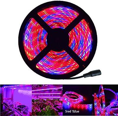 RoLightic 5 m LED Iluminación para plantas Grow Light Aquarium Tiras de luz para el crecimiento de las plantas SMD 5050 Rojo:Azul 5:1