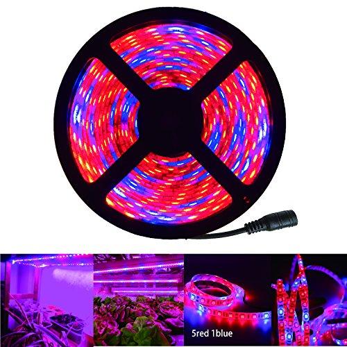 RoLightic-5M-Led-Pflanzenleuchte-Pflanzenlampe-Grow-Light-Aquarium-Strip-Streifen-Wachsen-Pflanzenlichter-Bar-Licht-SMD-5050-Pflanzen-5-1-5M-Led-Streifen