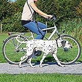 Hunde Fahrrad / Joggingleine