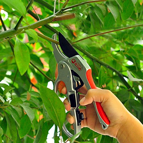 mark8shop-30mm-gardening-sectional-pruning-shears-scissors-branch-cut-trimmer