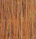 Sichtschutz Aus Weide, 150cm x 500cm, Papillon™