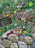 Blumenmischung SPERLI's Blütenteppich