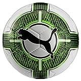 Puma Evopower Lite 3 350 G Fußball