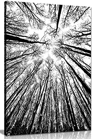 Abstract Modern Art Home Black & White Trees Canvas Wall Art Picture Print (36x24in)
