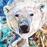 Image of Incado 70 x 70 x 4 cm James Grey Polar Bear Design Art - Comparsion Tool
