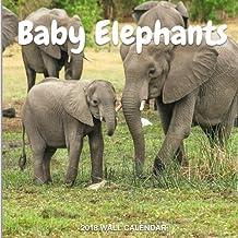 Baby Elephants 2018 Wall Calendar: Baby Elephants Photography, 8.5 x 8.5, Mini Calendar, Wall Calendar (New Years Gift Idea) (Animal Calendars)