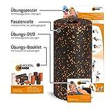 Blackroll Orange (Das Original) - Faszienrolle inkl. Übungs-DVD, Übungsposter & Booklet. Die Massagerolle für die Faszien, auch Foam Roller, Gymnastikrolle, Fitnessrolle genannt, zur Selbstmassage und Behandlung des Bindegewebes. Qualität Made in Germany -