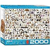 Eurographics The World of Dogs Puzzle - Rompecabezas (Puzzle Rompecabezas, Animales, Niños y Adultos, Perro, Niño/niña, Caja)