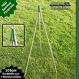 Bambus Rankhilfen SET als Pyramide, Kletterhilfe und Rankgerüst für Kübel, Töpfe und Beete