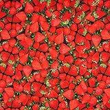 Jersey Stoff Digitaldruck Erdbeeren Strawberry rot grün
