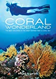 Coral Wonderland: The Best Dive Sites of the Great Barrier Reef