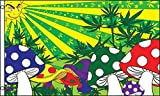 Le drapeau Champignon hallucinogène de la marque AZ FLAG est réalisé en polyester de haute qualité et comporte deux œillets métalliques. Les bords sont renforcés et les coutures doublées pour une résistance optimale. Le drapeau des champis proposé ic...