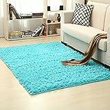 EOZY Alfombra de Peluche Antideslizantes para Salón Dormitorio Azul 60×90