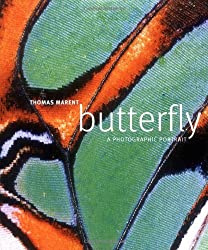 Butterfly: A photographic portrait (Dk Reference) by Thomas Marent (2008-04-01)