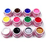 Anself Verni semi permanent Résine naturelle Pigment Set UV/LED pour Tout les ongles 12