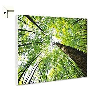 Pinnwand Magnettafel Memoboard Motiv Natur & Blumen Ein Tag im Wald (80 x 60 cm)