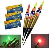Aalpose Paladin LED Laufpose Leucht Angelpose zum Angeln im Dunkeln Leuchtpose Pose zum Nachtangeln Angelschwimmer